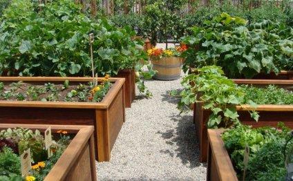 Как сделать красивый сад - 6