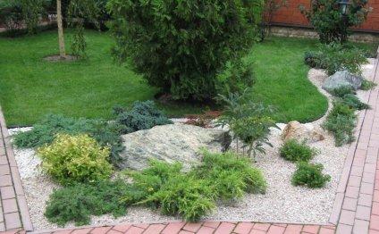 Дизайн садового участка в