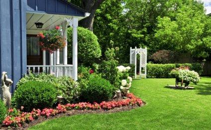 Домашний сад можно украсить