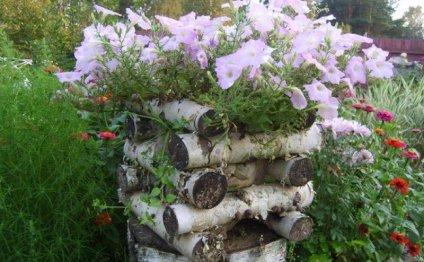 Идеи для дизайна сада своими