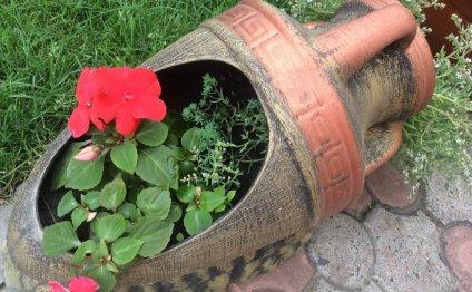 Как украсить сад и дачу