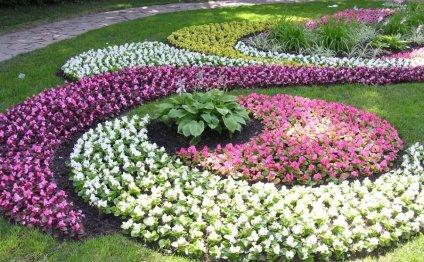 Клумбы и цветники в Махачкале