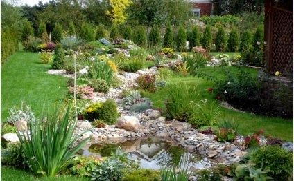 Фото: ландшафтный дизайн сада